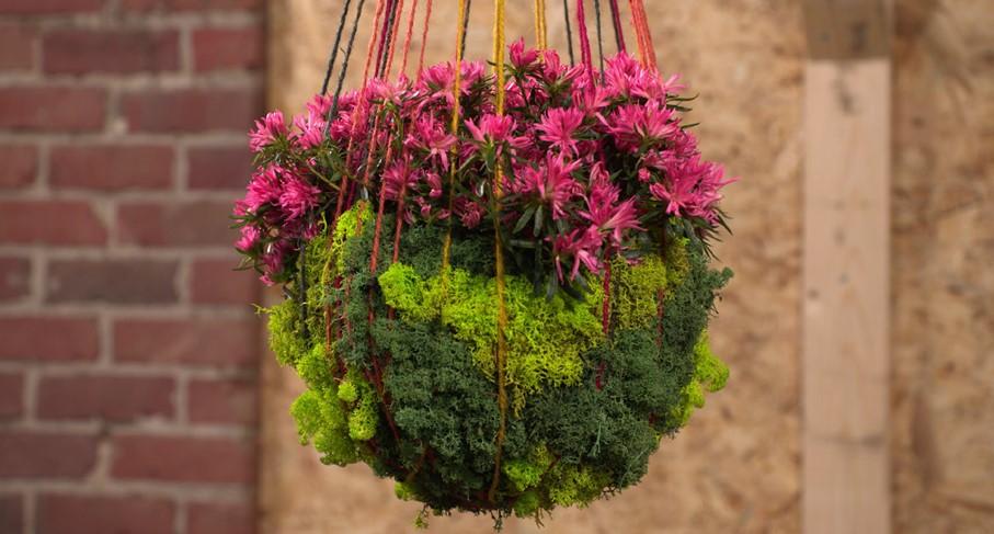 DIY - Mosbol met azalea